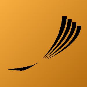 logo-wzlotu-sygnet_neg